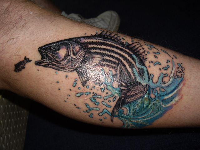 Striped bass Tattoos