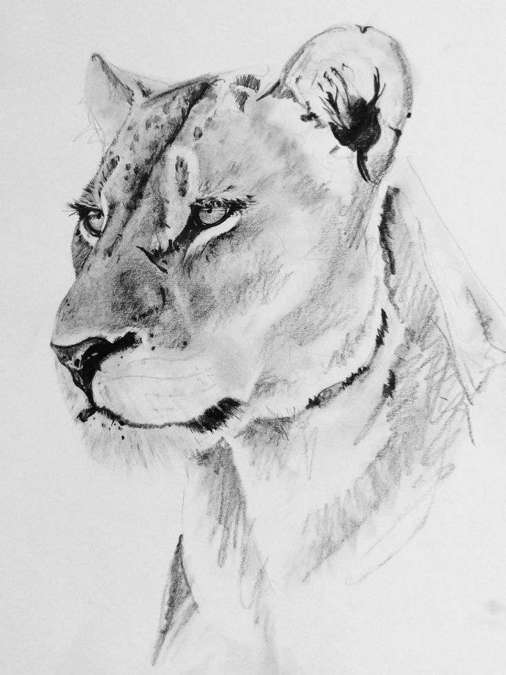 Female Lioness Tattoos
